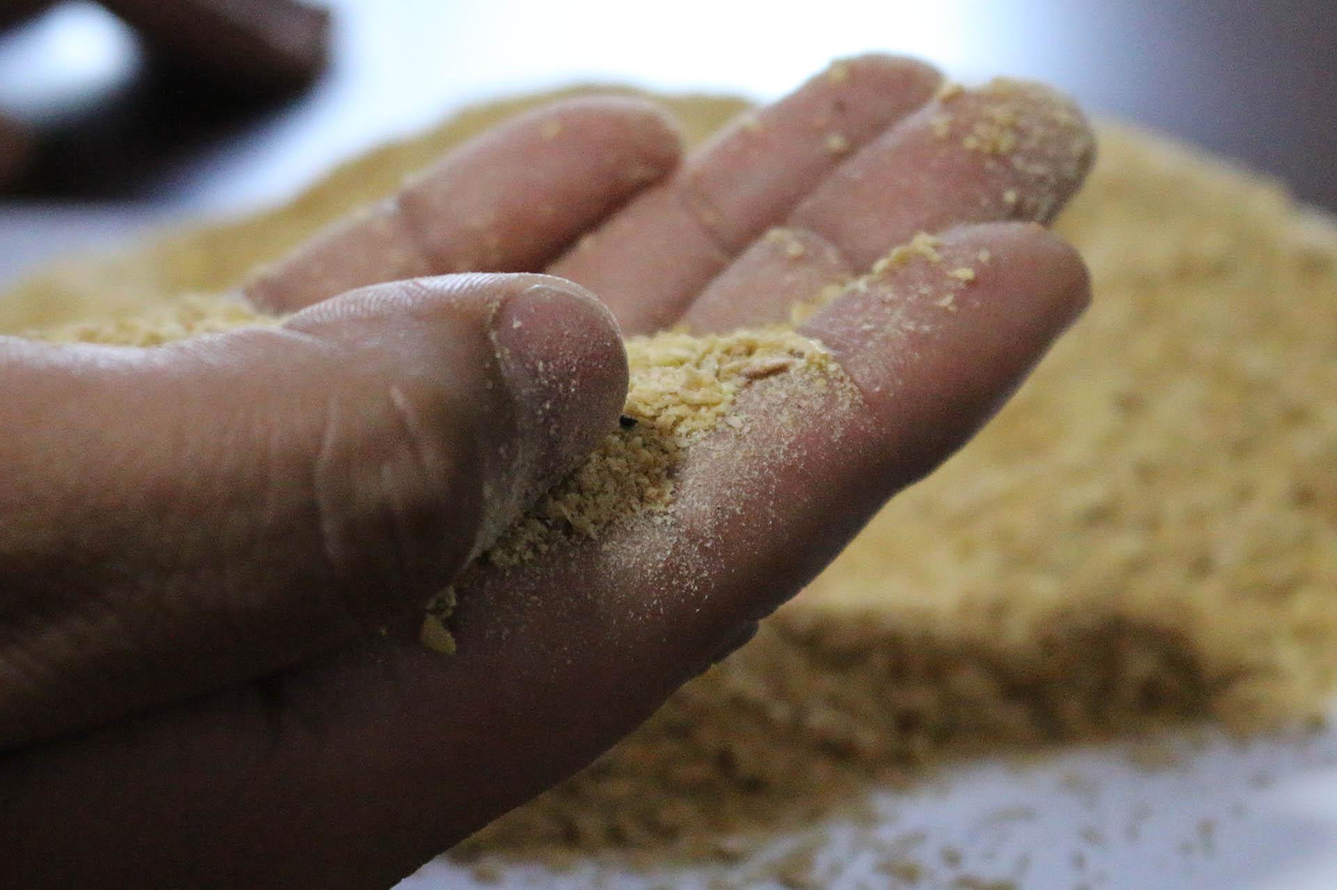 muestra de harinas y harinolina mexico proveedor mayorista alta calidad