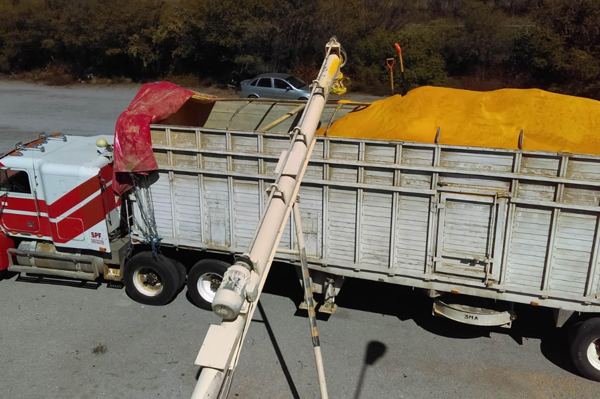 transporte de maiz y gluten por mayoreo mexico proveedores