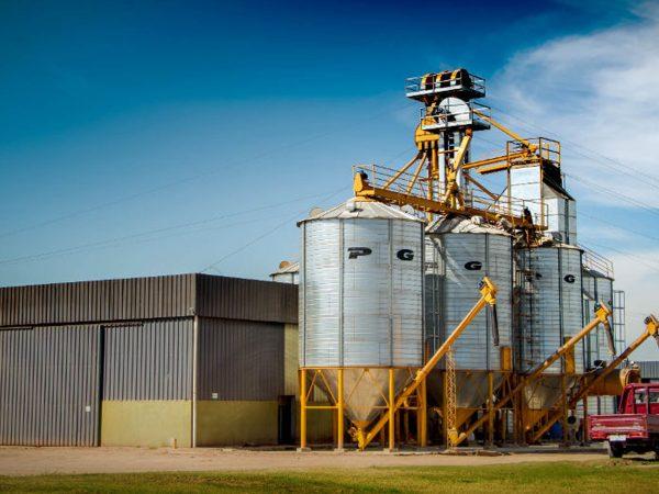 proveedor de granos y semillas materias primas industria mexico alimentos